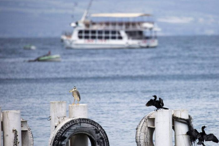 Biển hồ Ga-li-lê đầy tràn sau 20 năm hạn hán
