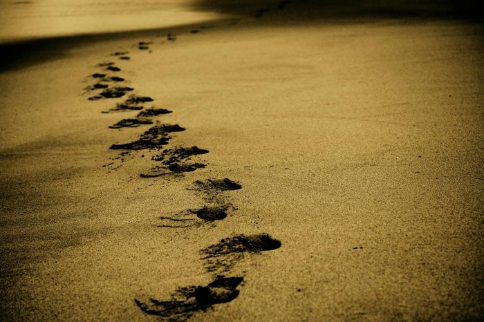 Theo Chúa hay muốn dẫn Chúa theo bạn?